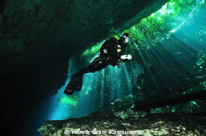 The Ponderosa Cenote by Henrik Gram Rasmussen 